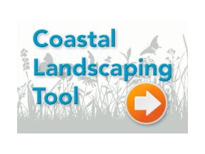 coastal-tool